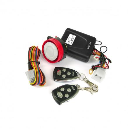 Alarme 2 Télécommandes Homologuée CE - TNT